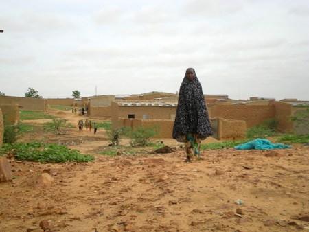 Scatti dal Niger